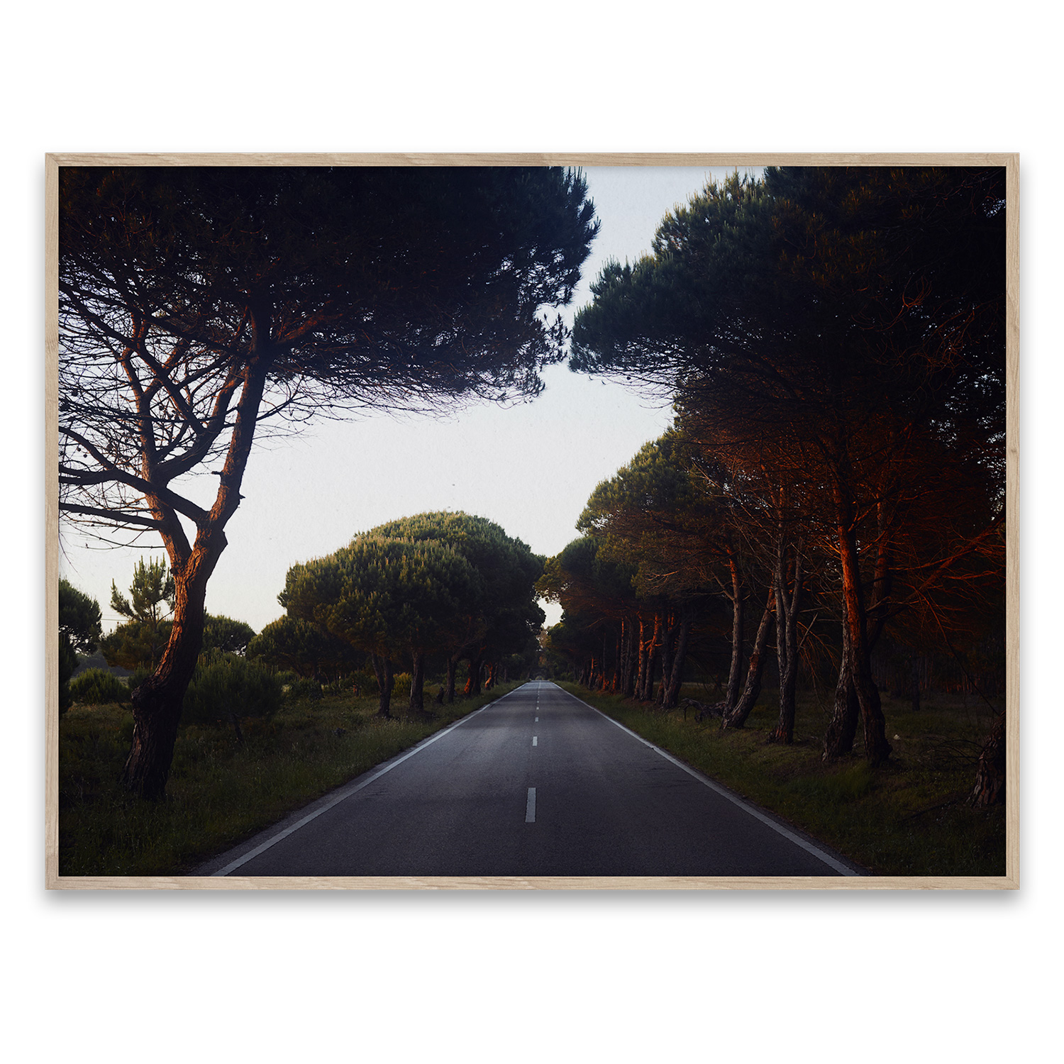 N268 poster 40x30