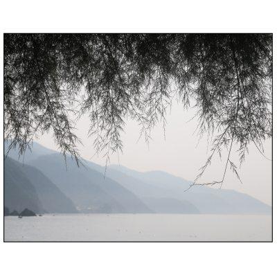 Dis ver Cinque Terre poster