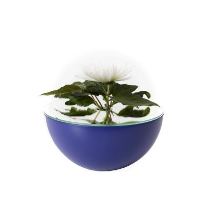 Bild av Poem vas, blå