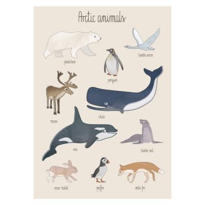 Poster, arktiska djur