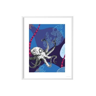 Poster Galapagos