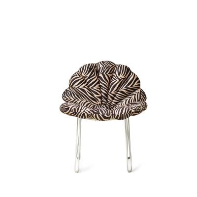 Shell dyna, zebra