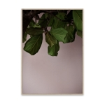 Green Leaves poster 40x30